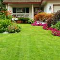 Monterey/Santa Cruz Lawn Care Contractor
