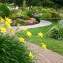 Monterey/Santa Cruz Flower Garden