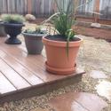 Aptos CA Plant Installation