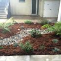 Monterey Bay CA Plant Installation