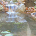 Backyard Pond Designs Monterey/Santa Cruz