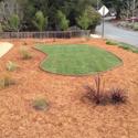 Monterey Bay Turfs Water Rebate